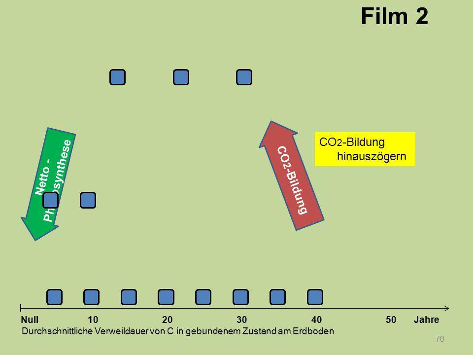 Netto - Photosynthese 70 1020304050 Jahre Durchschnittliche Verweildauer von C in gebundenem Zustand am Erdboden Null CO 2 -Bildung Film 2 CO 2 -Bildu