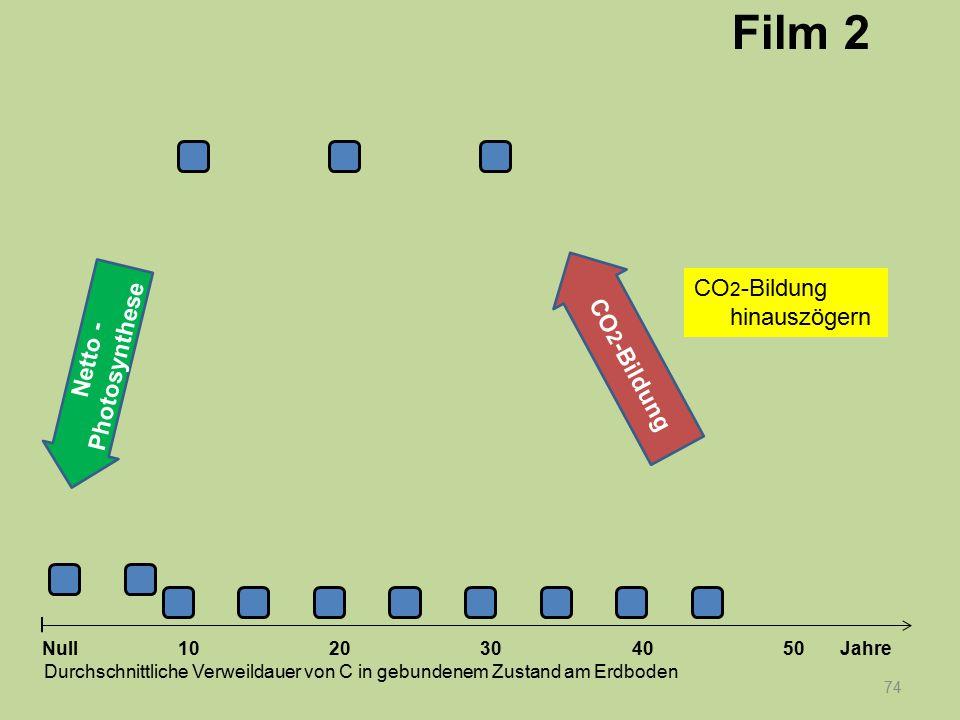 Netto - Photosynthese 74 1020304050 Jahre Durchschnittliche Verweildauer von C in gebundenem Zustand am Erdboden Null CO 2 -Bildung Film 2 CO 2 -Bildu
