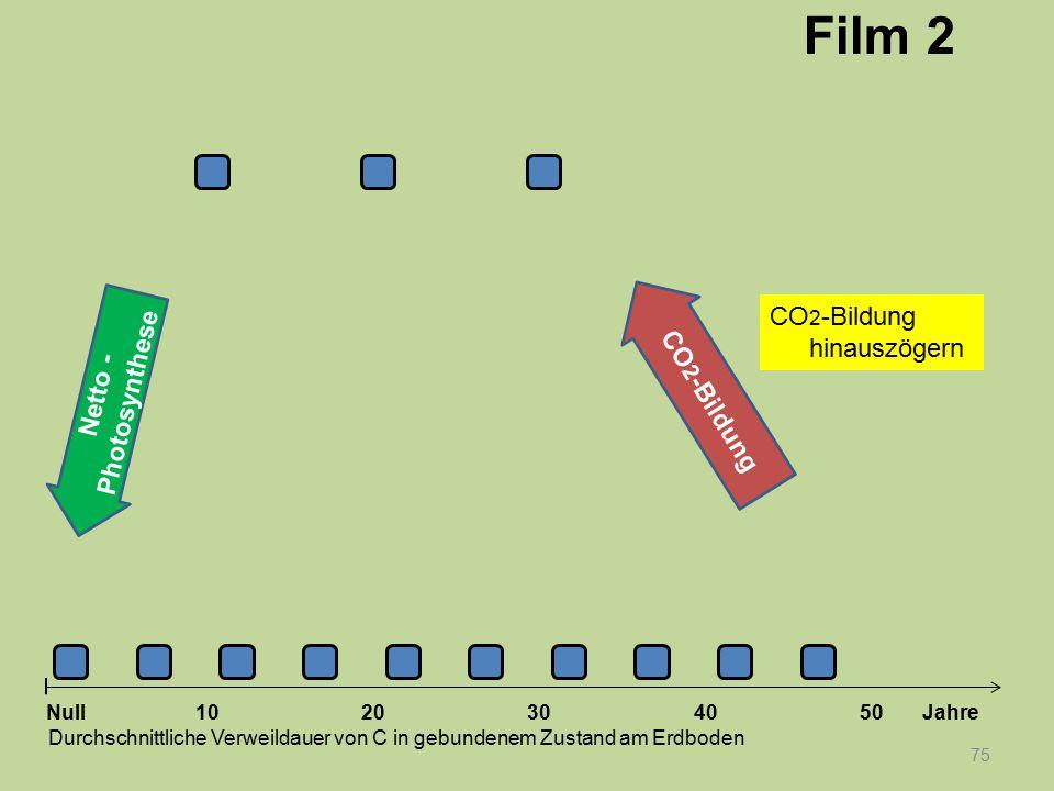 Netto - Photosynthese 75 1020304050 Jahre Durchschnittliche Verweildauer von C in gebundenem Zustand am Erdboden Null CO 2 -Bildung Film 2 CO 2 -Bildu