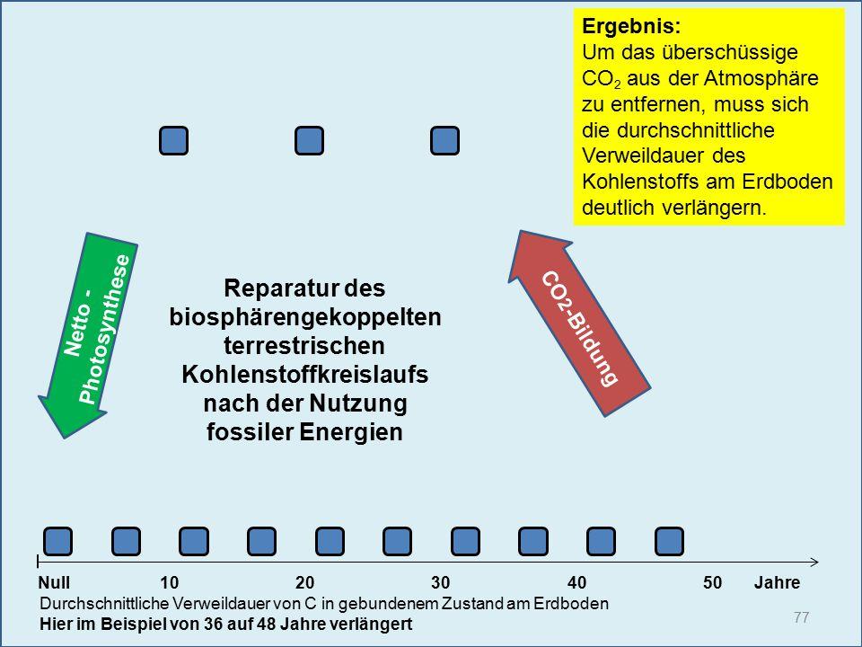 Netto - Photosynthese 77 1020304050 Jahre Durchschnittliche Verweildauer von C in gebundenem Zustand am Erdboden Hier im Beispiel von 36 auf 48 Jahre