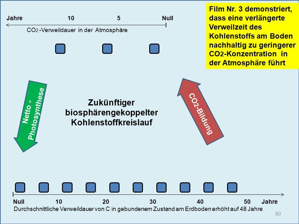 80 1020304050 Jahre Durchschnittliche Verweildauer von C in gebundenem Zustand am Erdboden erhöht auf 48 Jahre Null Film Nr. 3 demonstriert, dass eine