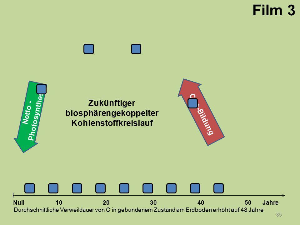 Netto - Photosynthese 85 1020304050 Jahre Durchschnittliche Verweildauer von C in gebundenem Zustand am Erdboden erhöht auf 48 Jahre Null CO 2 -Bildun