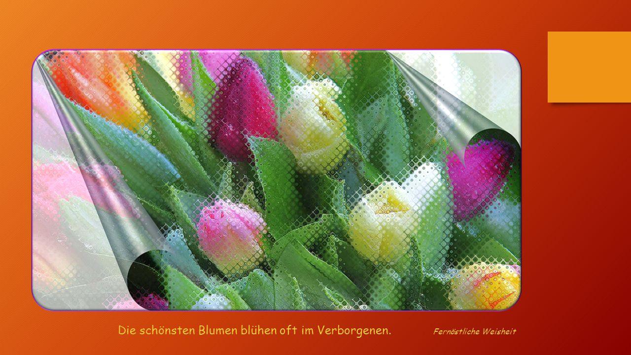 Woran dich Blumen erinnern sollen: Lobe dich täglich und schenke dir ein Lächeln, sei gut zu dir, genieße den Augenblick und feiere den Tag. Und wenn