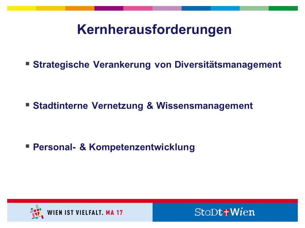 Kernherausforderungen  Strategische Verankerung von Diversitätsmanagement  Stadtinterne Vernetzung & Wissensmanagement  Personal- & Kompetenzentwicklung
