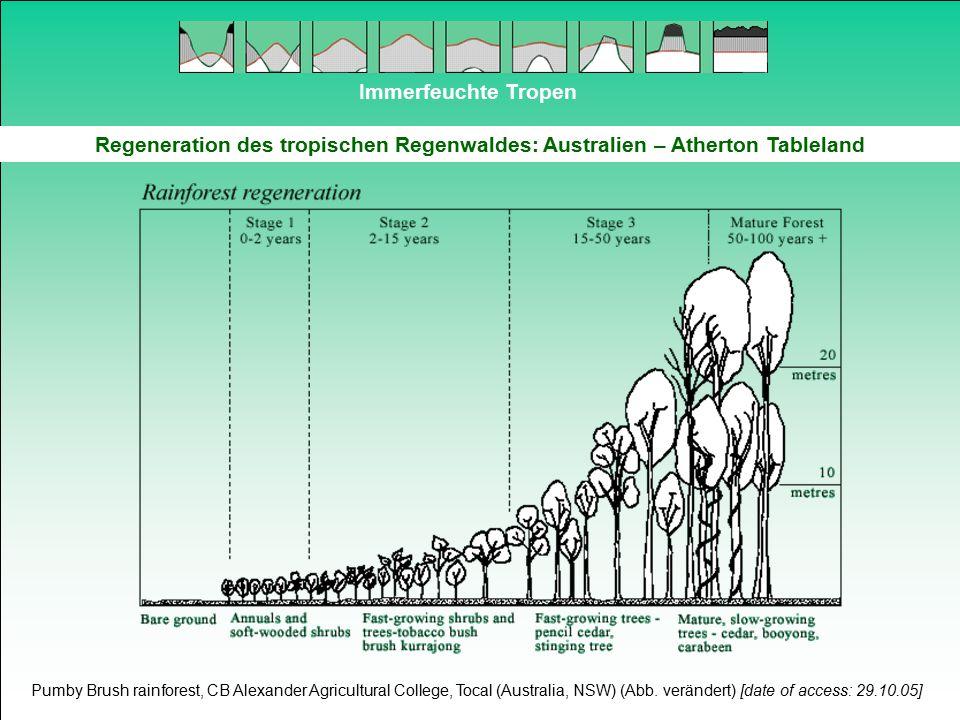 Immerfeuchte Tropen Regeneration des tropischen Regenwaldes: Australien – Atherton Tableland Pumby Brush rainforest, CB Alexander Agricultural College