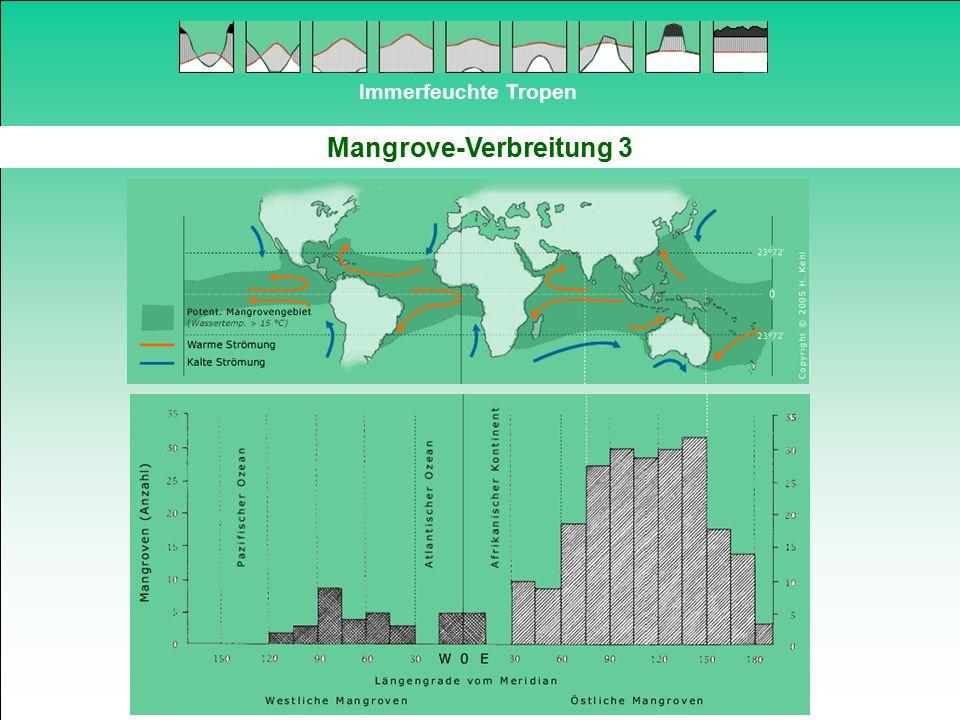 Immerfeuchte Tropen Mangrove-Verbreitung 3