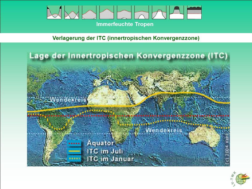 Immerfeuchte Tropen Verlagerung der ITC (innertropischen Konvergenzzone)