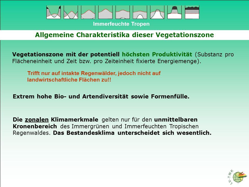 Immerfeuchte Tropen Mangroven 4 Mangroven - Arten: Avicennia officinalis Avicennia germinans (Schwarze Mangrove) Rhizophora mangle (Rote Mongrove) Laguncularia racemosa (Weiße Mangrove) Conocarpus erectus (Buttonwood) Ceriops spec.