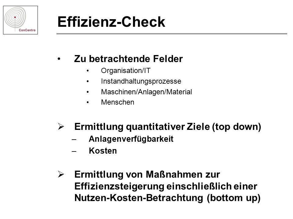 Effizienz-Check Zu betrachtende Felder Organisation/IT Instandhaltungsprozesse Maschinen/Anlagen/Material Menschen  Ermittlung quantitativer Ziele (t