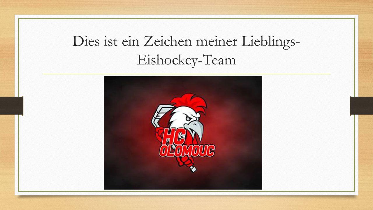 Dies ist ein Zeichen meiner Lieblings- Eishockey-Team
