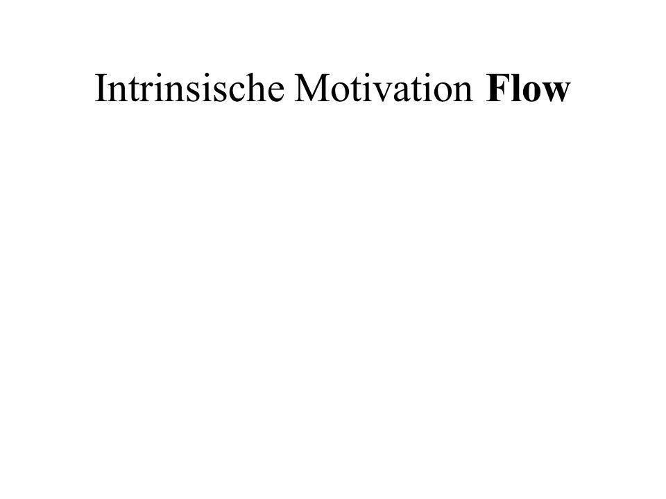 Intrinsische Motivation Flow