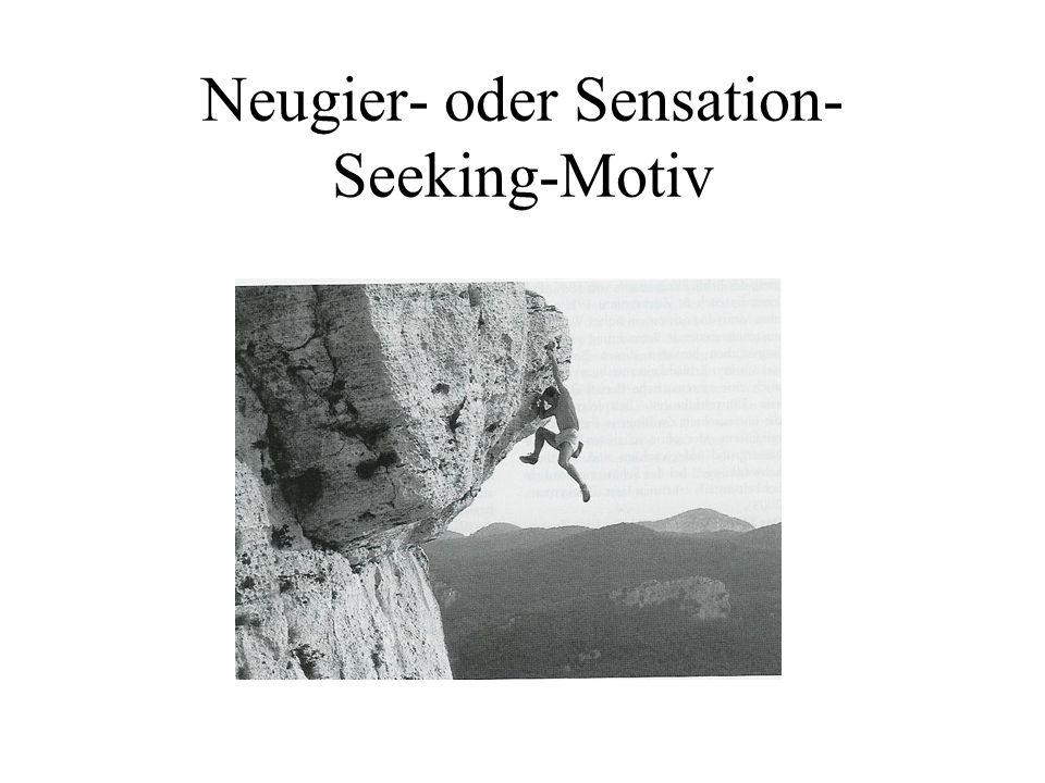 Neugier- oder Sensation- Seeking-Motiv
