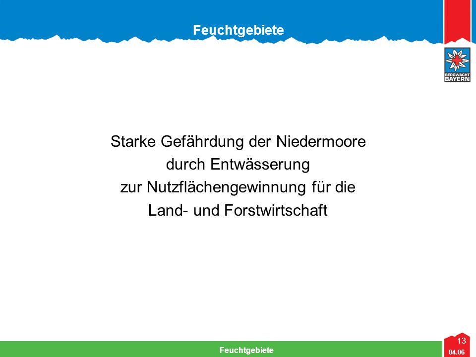 13 04.06 Feuchtgebiete Starke Gefährdung der Niedermoore durch Entwässerung zur Nutzflächengewinnung für die Land- und Forstwirtschaft