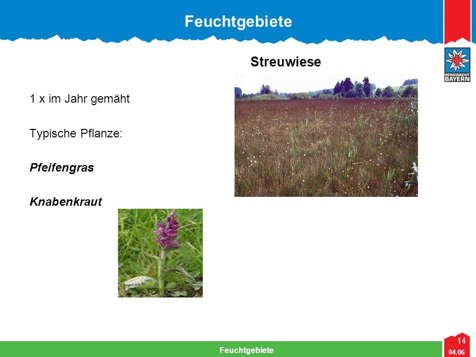 14 04.06 Feuchtgebiete Streuwiese 1 x im Jahr gemäht Typische Pflanze: Pfeifengras Knabenkraut