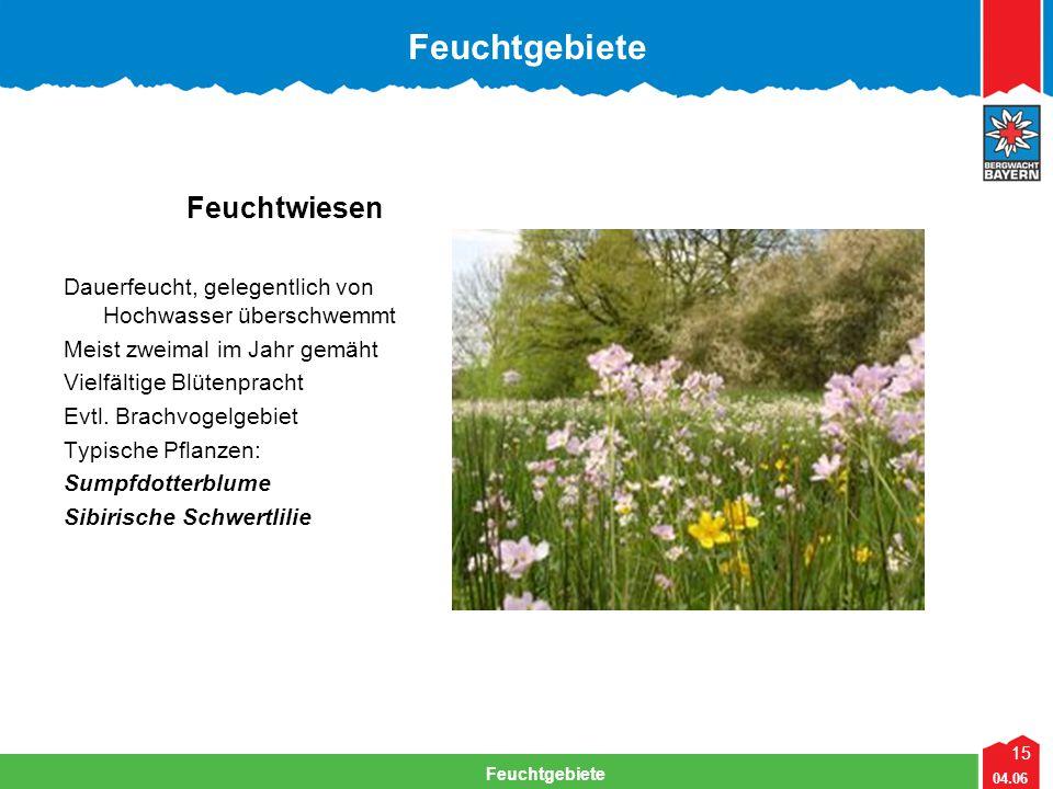 15 04.06 Feuchtgebiete Lehrteam Bergwacht Viechtach Feuchtgebiete Feuchtwiesen Dauerfeucht, gelegentlich von Hochwasser überschwemmt Meist zweimal im Jahr gemäht Vielfältige Blütenpracht Evtl.