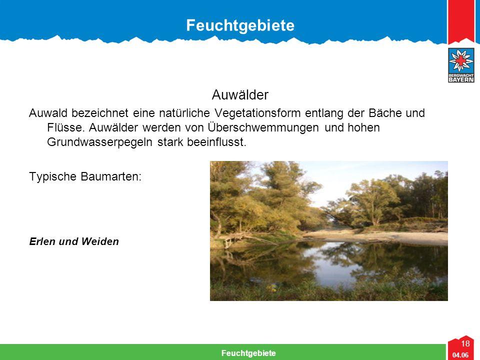 18 04.06 Feuchtgebiete Auwälder Auwald bezeichnet eine natürliche Vegetationsform entlang der Bäche und Flüsse. Auwälder werden von Überschwemmungen u