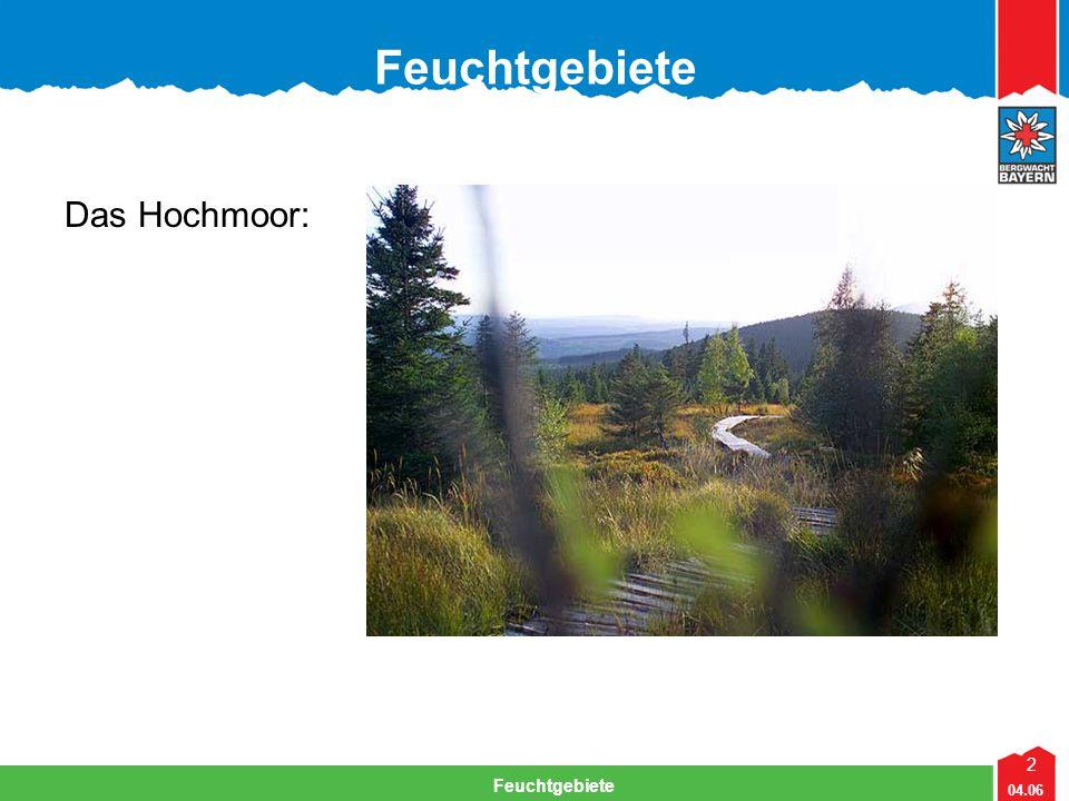 23 04.06 Feuchtgebiete Fragen aus der Naturschutzprüfung Moore sind sehr empfindliche Lebensräume und damit stark Gefährdet.