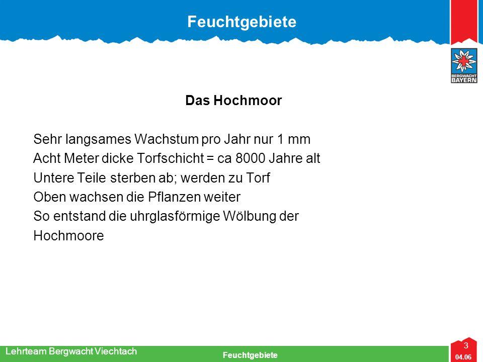 3 04.06 Feuchtgebiete Lehrteam Bergwacht Viechtach Das Hochmoor Sehr langsames Wachstum pro Jahr nur 1 mm Acht Meter dicke Torfschicht = ca 8000 Jahre
