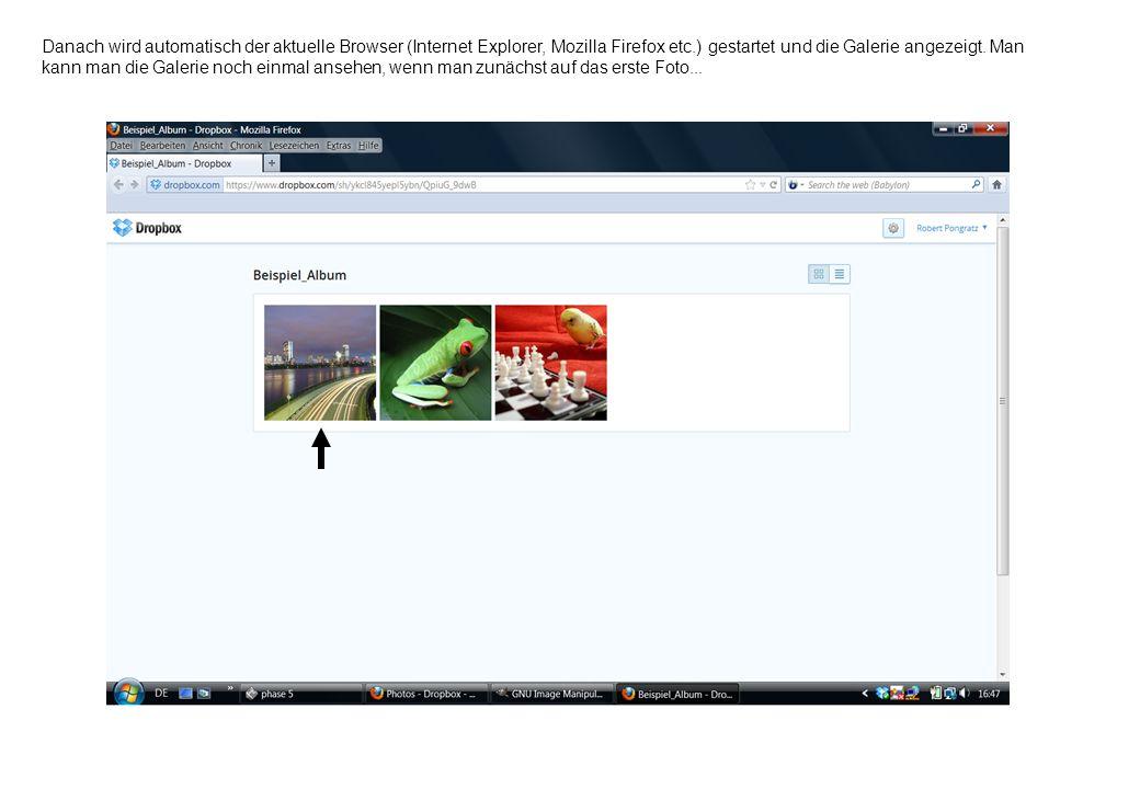 Danach wird automatisch der aktuelle Browser (Internet Explorer, Mozilla Firefox etc.) gestartet und die Galerie angezeigt. Man kann man die Galerie n