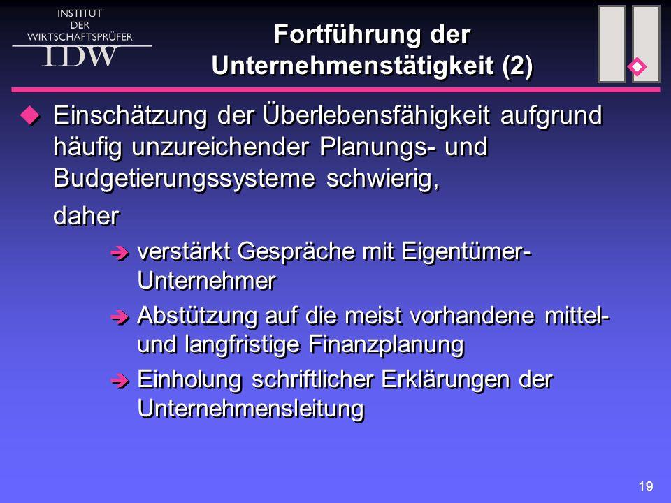 19 Fortführung der Unternehmenstätigkeit (2)  Einschätzung der Überlebensfähigkeit aufgrund häufig unzureichender Planungs- und Budgetierungssysteme