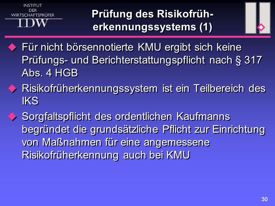 30 Prüfung des Risikofrüh- erkennungssystems (1)  Für nicht börsennotierte KMU ergibt sich keine Prüfungs- und Berichterstattungspflicht nach § 317 A