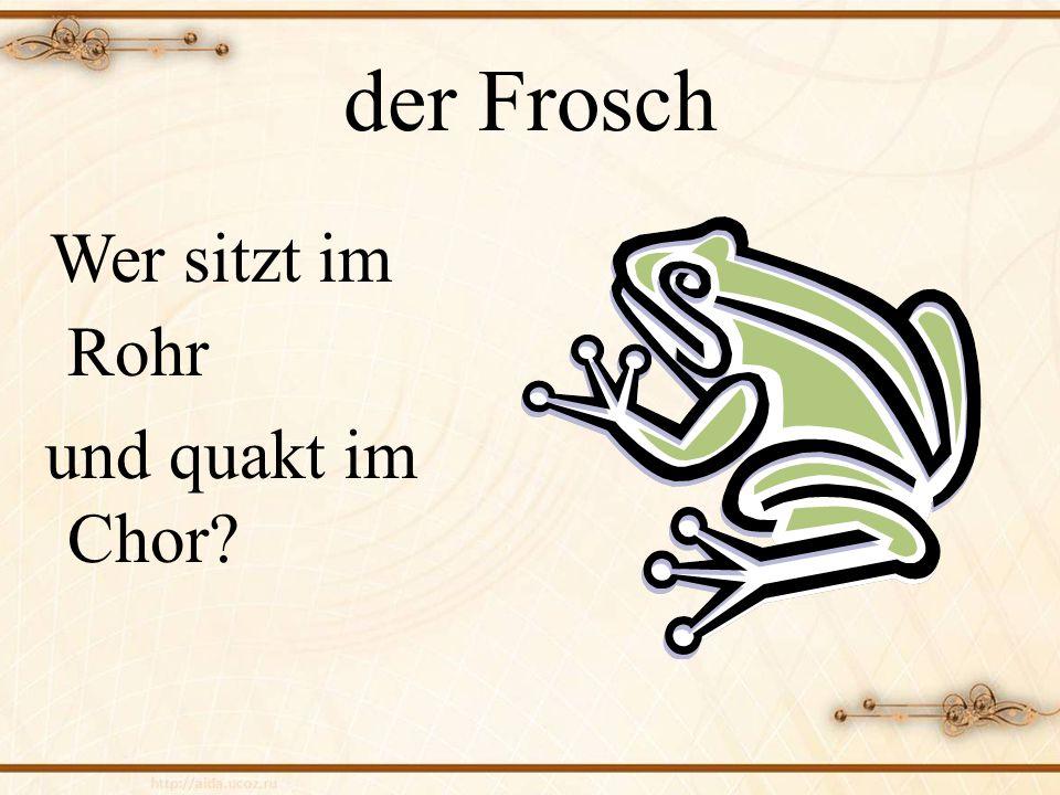 der Frosch Wer sitzt im Rohr und quakt im Chor?