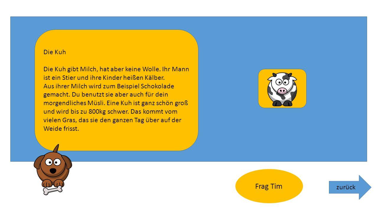 """zurück. Willkommen bei """"Frag Tim"""" Klicke einfach auf das Tier, über das du mehr erfahren möchtest und ich erzähle dir etwas über es."""
