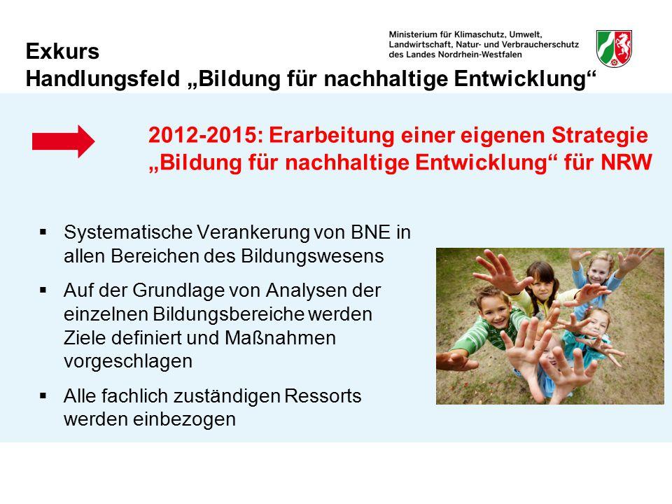 """Exkurs Handlungsfeld """"Bildung für nachhaltige Entwicklung"""" 2012-2015: Erarbeitung einer eigenen Strategie """"Bildung für nachhaltige Entwicklung"""" für NR"""