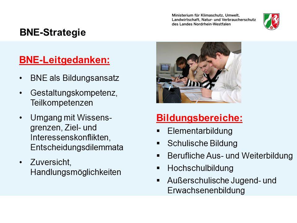 BNE-Strategie Bildungsbereiche:  Elementarbildung  Schulische Bildung  Berufliche Aus- und Weiterbildung  Hochschulbildung  Außerschulische Jugen