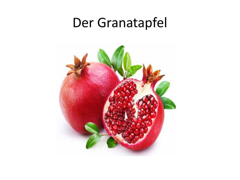 Der Granatapfel