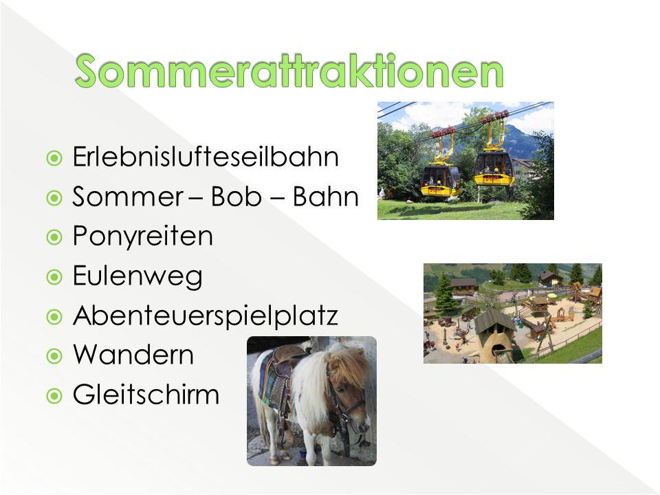  Erlebnislufteseilbahn  Sommer – Bob – Bahn  Ponyreiten  Eulenweg  Abenteuerspielplatz  Wandern  Gleitschirm