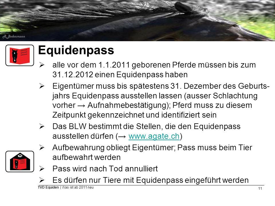 11 TVD Equiden | Was ist ab 2011 neu Equidenpass  alle vor dem 1.1.2011 geborenen Pferde müssen bis zum 31.12.2012 einen Equidenpass haben  Eigentüm