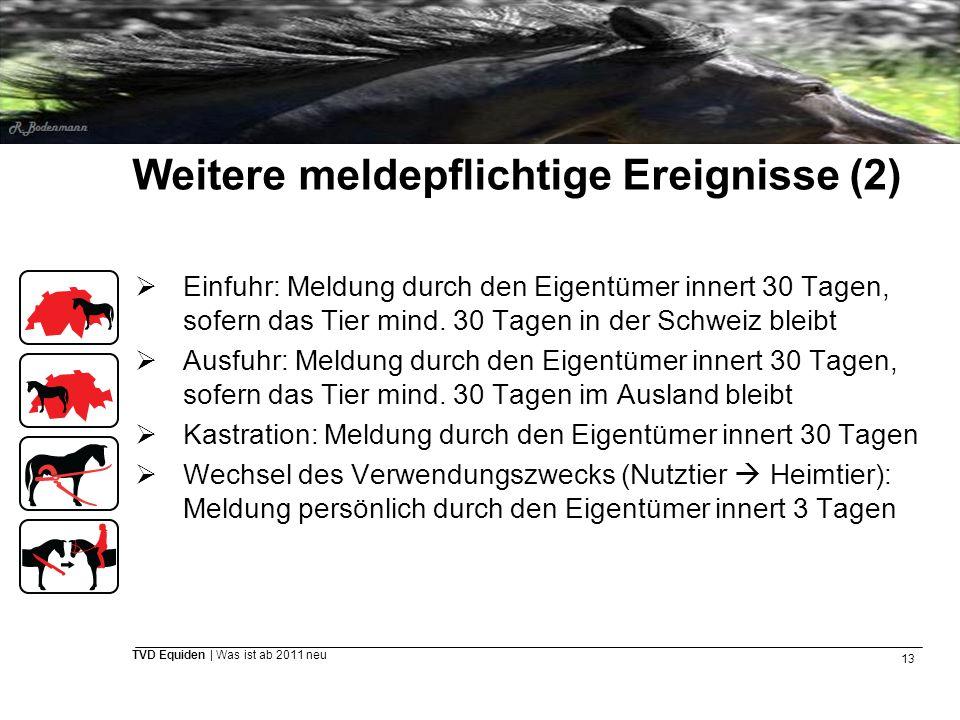 13 TVD Equiden | Was ist ab 2011 neu Weitere meldepflichtige Ereignisse (2)  Einfuhr: Meldung durch den Eigentümer innert 30 Tagen, sofern das Tier m