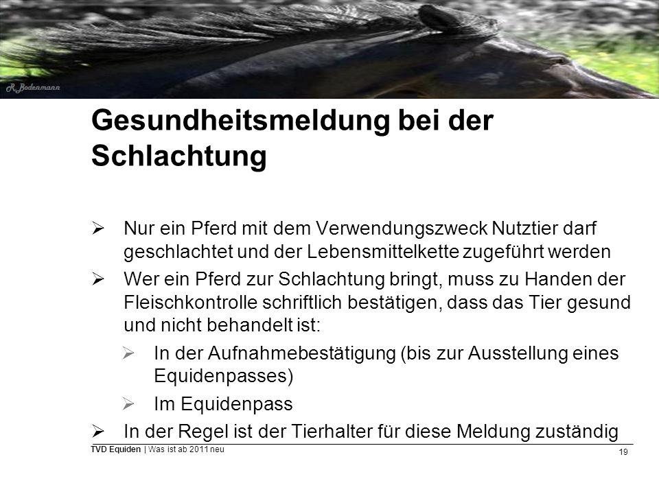 19 TVD Equiden | Was ist ab 2011 neu Gesundheitsmeldung bei der Schlachtung  Nur ein Pferd mit dem Verwendungszweck Nutztier darf geschlachtet und de