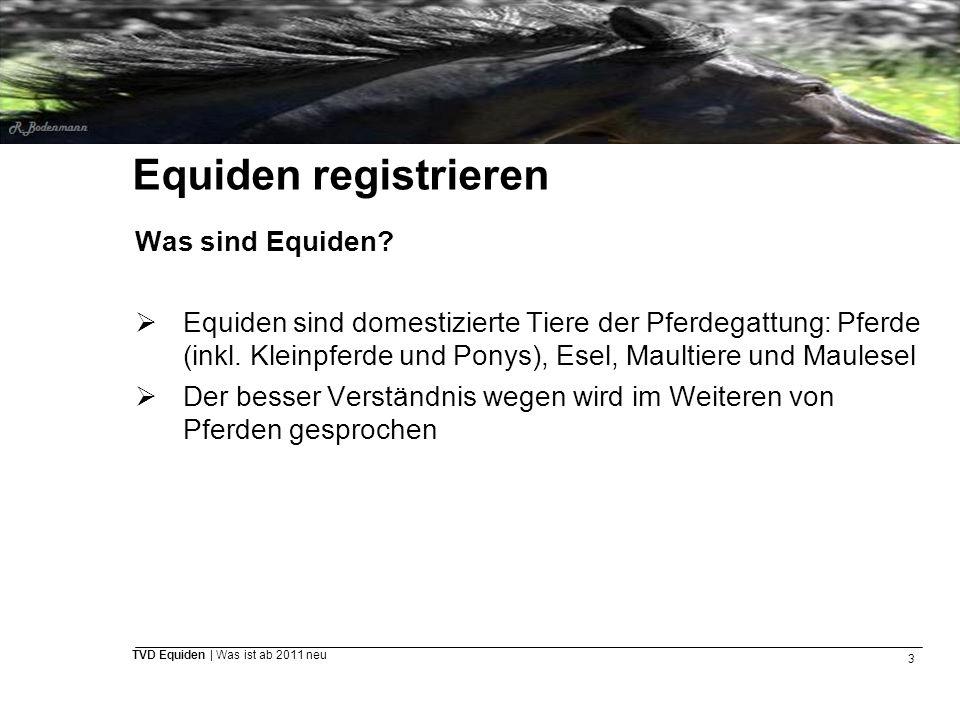 3 TVD Equiden | Was ist ab 2011 neu Equiden registrieren Was sind Equiden?  Equiden sind domestizierte Tiere der Pferdegattung: Pferde (inkl. Kleinpf