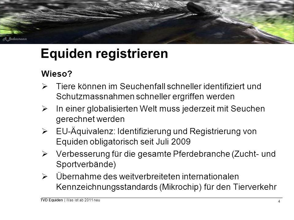 4 TVD Equiden | Was ist ab 2011 neu Equiden registrieren Wieso?  Tiere können im Seuchenfall schneller identifiziert und Schutzmassnahmen schneller e