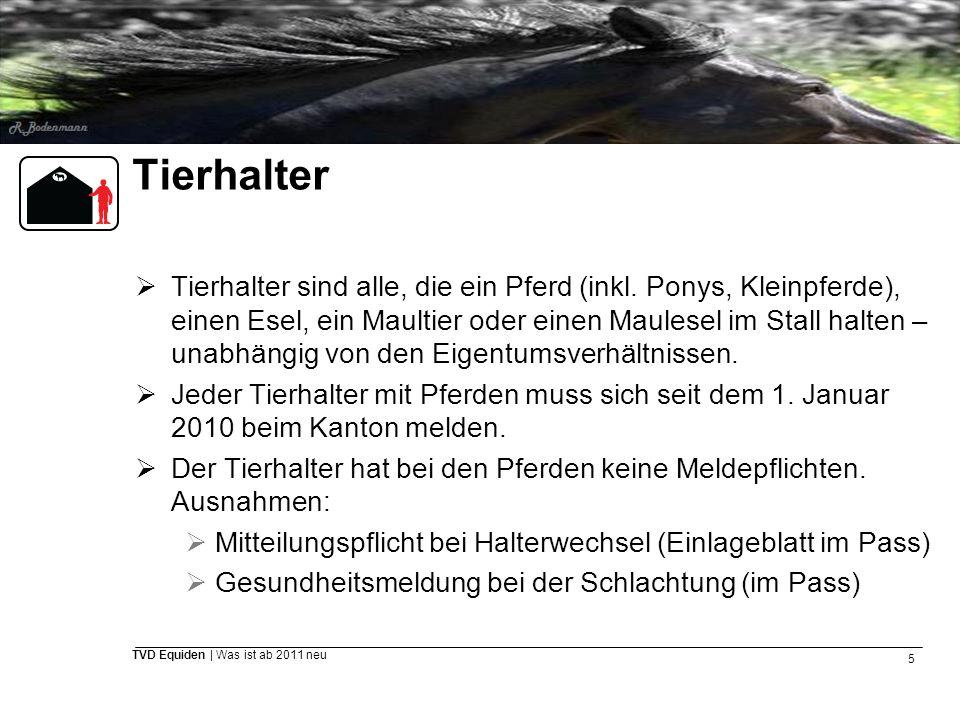 5 TVD Equiden | Was ist ab 2011 neu Tierhalter  Tierhalter sind alle, die ein Pferd (inkl. Ponys, Kleinpferde), einen Esel, ein Maultier oder einen M