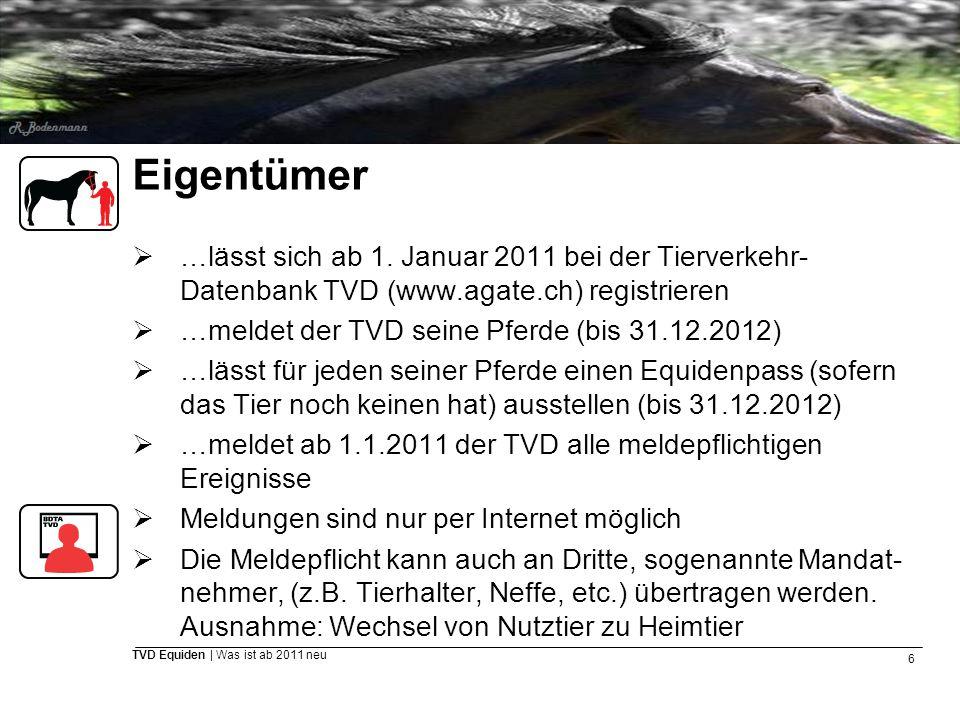 6 TVD Equiden | Was ist ab 2011 neu Eigentümer  …lässt sich ab 1. Januar 2011 bei der Tierverkehr- Datenbank TVD (www.agate.ch) registrieren  …melde