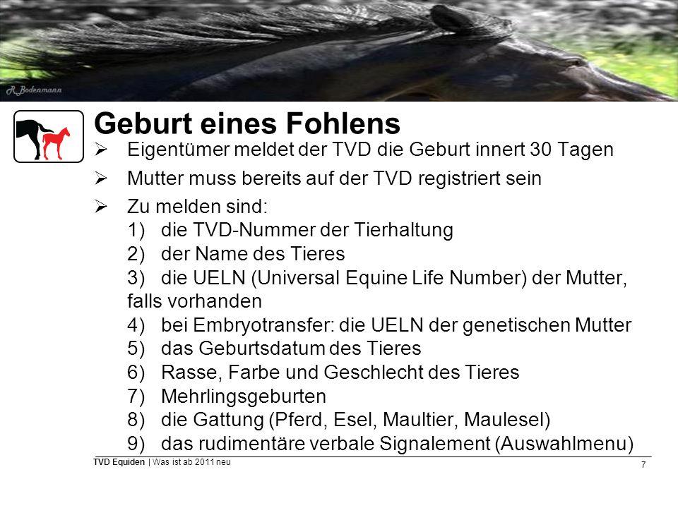 7 TVD Equiden | Was ist ab 2011 neu Geburt eines Fohlens  Eigentümer meldet der TVD die Geburt innert 30 Tagen  Mutter muss bereits auf der TVD regi