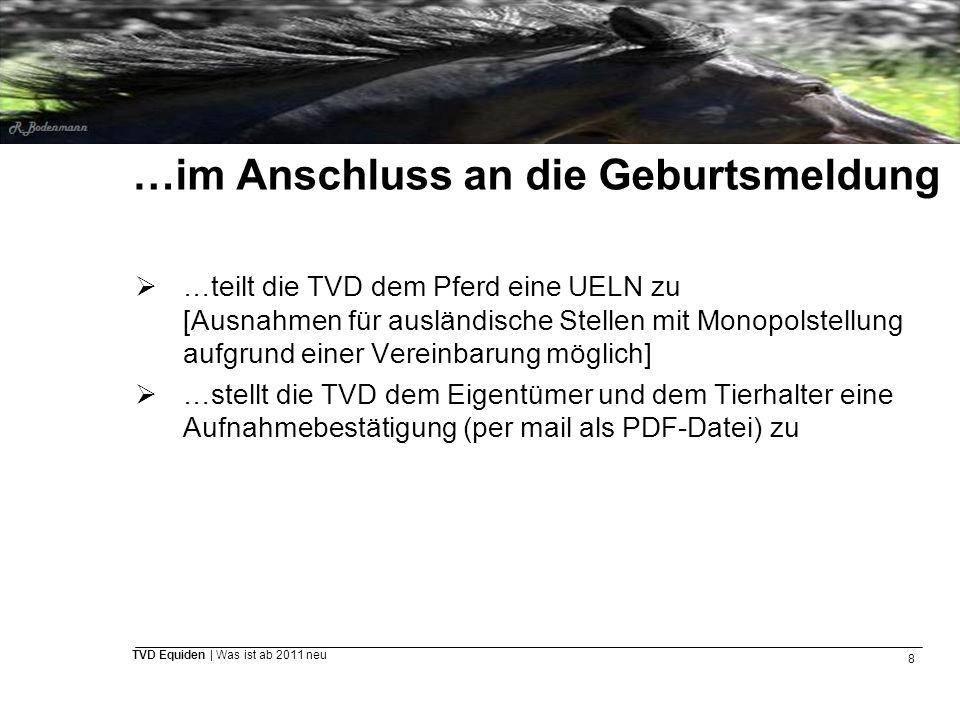 8 TVD Equiden | Was ist ab 2011 neu …im Anschluss an die Geburtsmeldung  …teilt die TVD dem Pferd eine UELN zu [Ausnahmen für ausländische Stellen mi