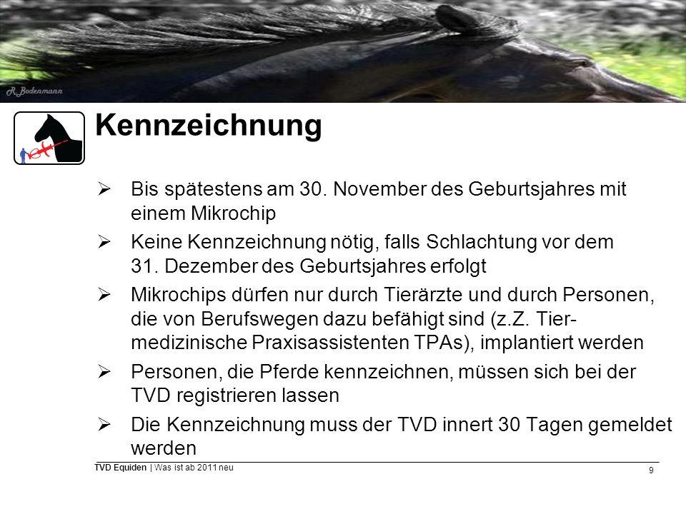 9 TVD Equiden | Was ist ab 2011 neu Kennzeichnung  Bis spätestens am 30. November des Geburtsjahres mit einem Mikrochip  Keine Kennzeichnung nötig,