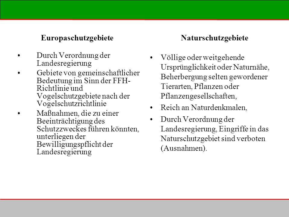 Europaschutzgebiete Naturschutzgebiete Durch Verordnung der Landesregierung Gebiete von gemeinschaftlicher Bedeutung im Sinn der FFH- Richtlinie und V