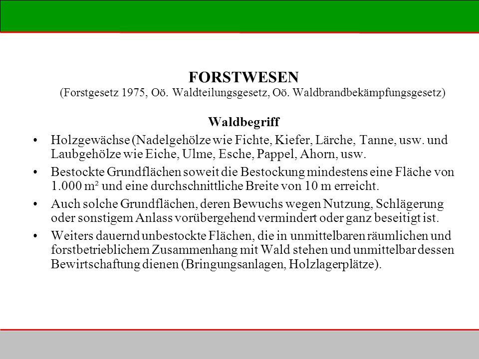 FORSTWESEN (Forstgesetz 1975, Oö. Waldteilungsgesetz, Oö. Waldbrandbekämpfungsgesetz) Waldbegriff Holzgewächse (Nadelgehölze wie Fichte, Kiefer, Lärch