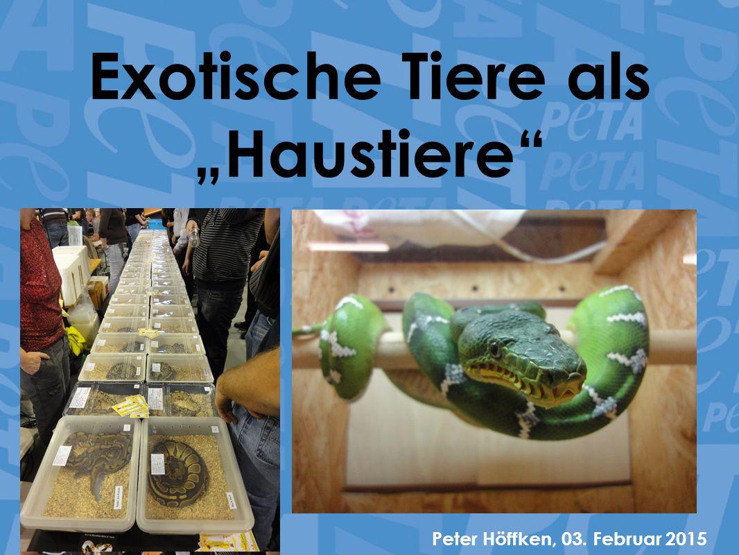 """Exotische Tiere als """"Haustiere"""" Peter Höffken, 03. Februar 2015"""
