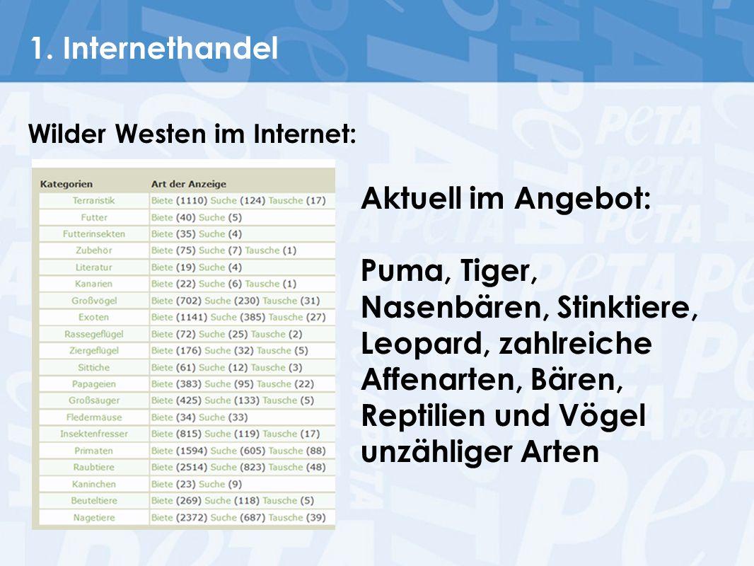 1. Internethandel Wilder Westen im Internet: Aktuell im Angebot: Puma, Tiger, Nasenbären, Stinktiere, Leopard, zahlreiche Affenarten, Bären, Reptilien