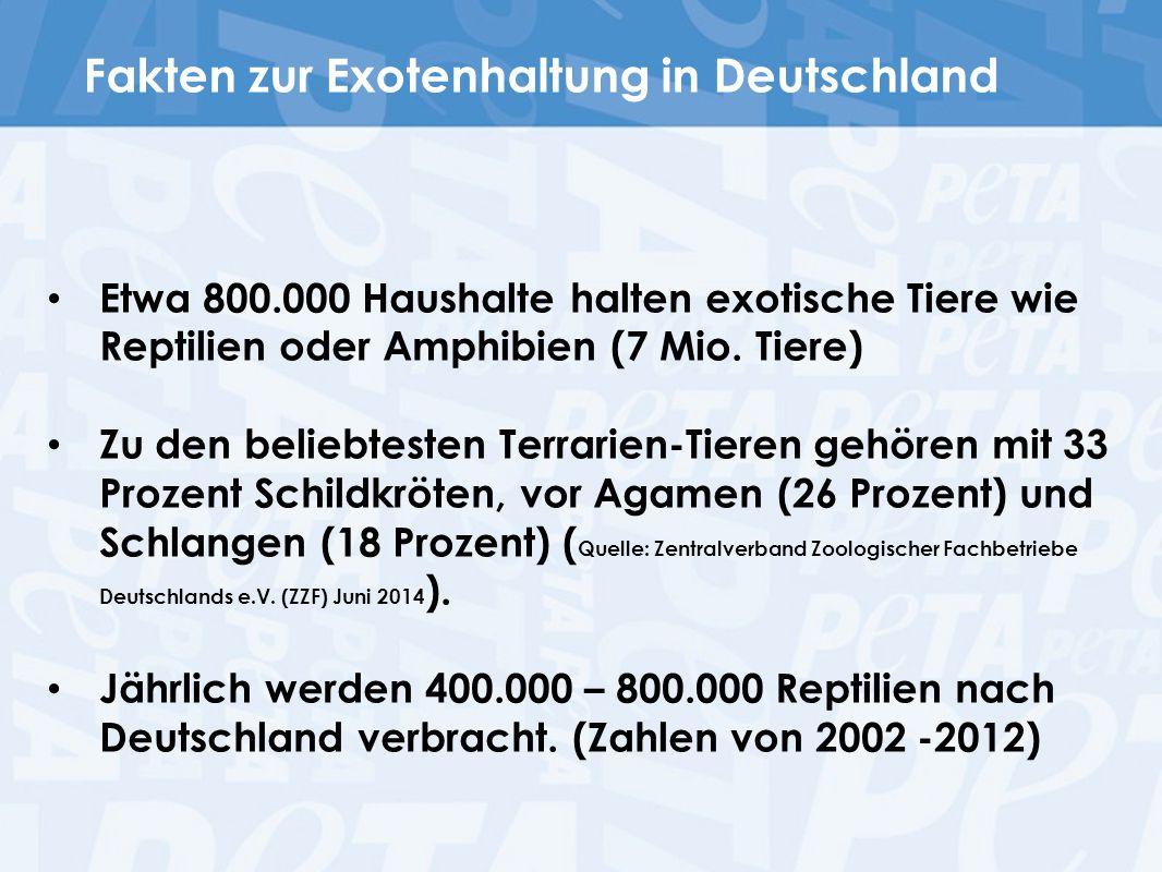 Fakten zur Exotenhaltung in Deutschland Etwa 800.000 Haushalte halten exotische Tiere wie Reptilien oder Amphibien (7 Mio. Tiere) Zu den beliebtesten