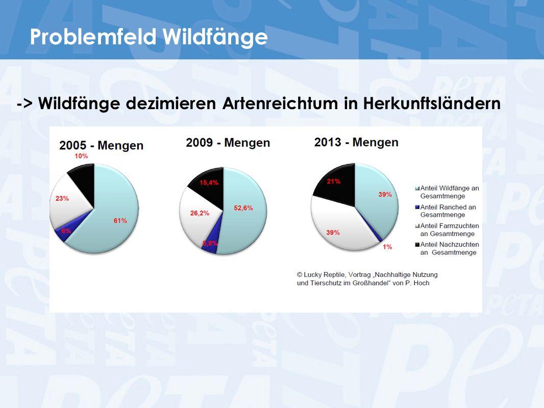 Problemfeld Wildfänge -> Wildfänge dezimieren Artenreichtum in Herkunftsländern
