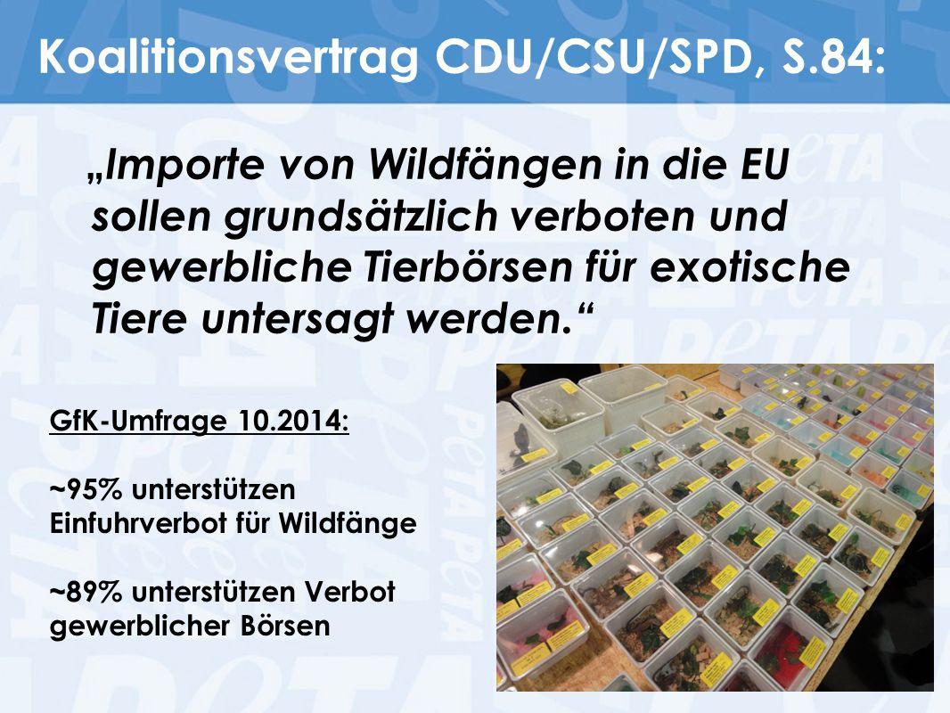 """Koalitionsvertrag CDU/CSU/SPD, S.84: """" Importe von Wildfängen in die EU sollen grundsätzlich verboten und gewerbliche Tierbörsen für exotische Tiere u"""