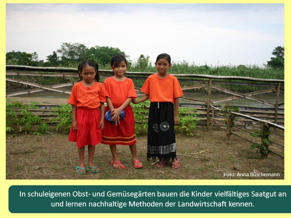 In schuleigenen Obst- und Gemüsegärten bauen die Kinder vielfältiges Saatgut an und lernen nachhaltige Methoden der Landwirtschaft kennen. Foto: Anna