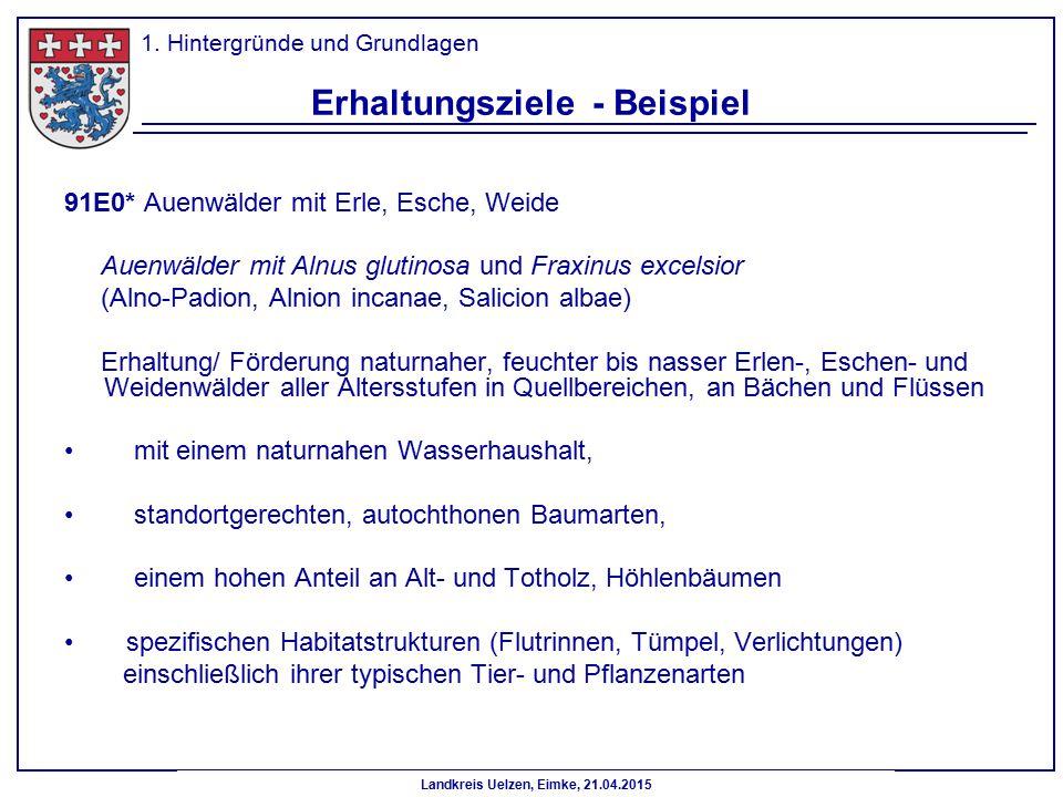 Landkreis Uelzen, Eimke, 21.04.2015 Erhaltungsziele - Beispiel 91E0* Auenwälder mit Erle, Esche, Weide Auenwälder mit Alnus glutinosa und Fraxinus exc